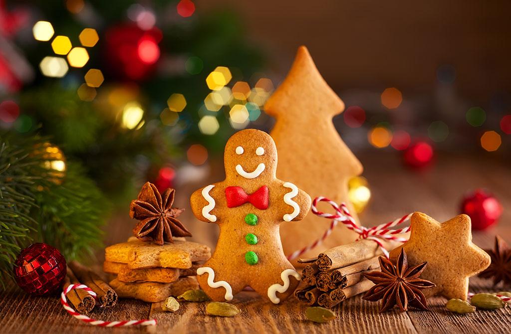 The Joys Of Christmas.Celebrating The Many Many Joys Of Christmas Scott S Guide